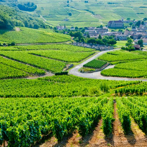 Camping en Bourgogne du Sud